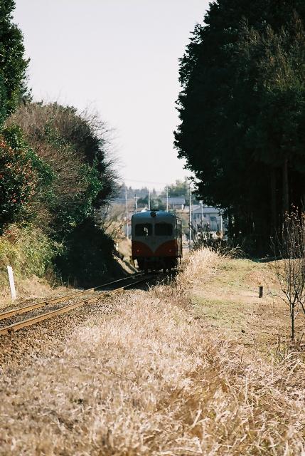 20070204_05
